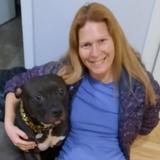 Pawsitive Pet Care Services